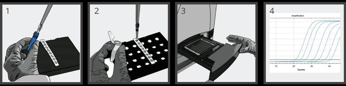 modo-de-uso-prueba-serotyping-dengue-viasure
