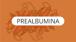 Prealbúmina-Proteínas-Específicas