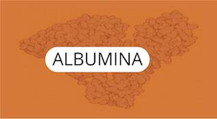 albumina-quimica-general