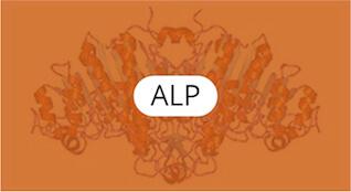 alp-quimica-general