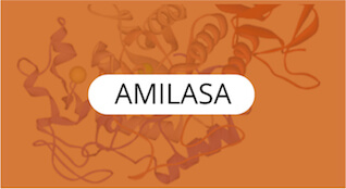 amilasa-quimica-general