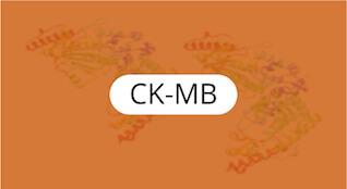 ck-mb-quimica-general