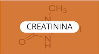 creatinina-quimica-general