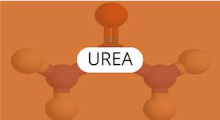 urea-quimica-general