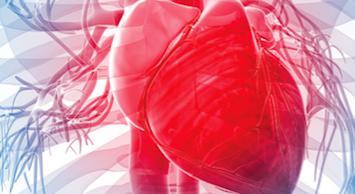 marcadores-cardiacos-response
