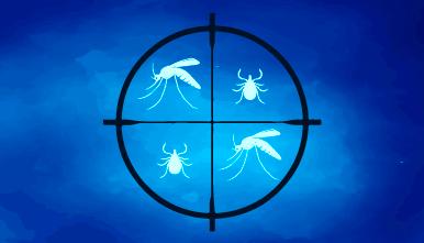 Viasure-Multiplex-Zika-Dengue-Chikungunya
