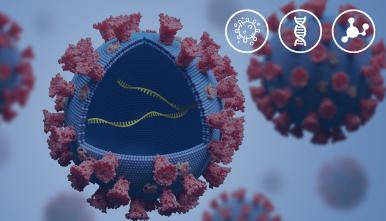 viasure-flua-a-flu-b-y-rsv-kabla-PCR