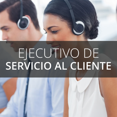 Ejecutivo de Servicio al Cliente